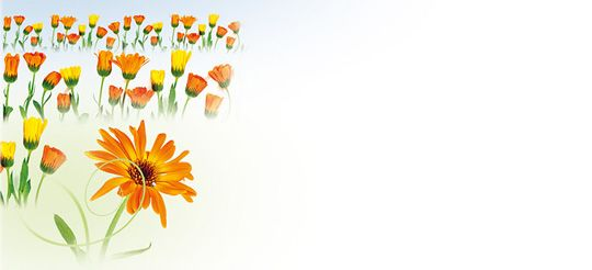 Zauber in Orange, Kuvert ohne Fenster