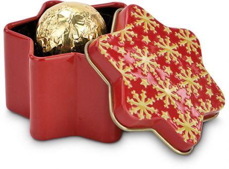 Weihnachtszeit-Weihnachtsstern-P0434